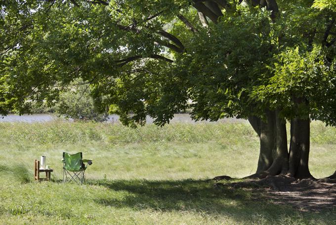 ステルトンを持ってピクニック ここでゆっくりコーヒーを飲みます