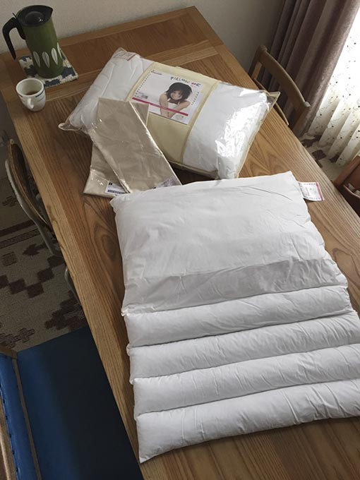 ダンフィルの枕ピローミー